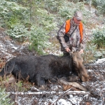 Photo Chasse Orignal Hunting Moose