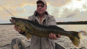 pêche au doré en abitibi